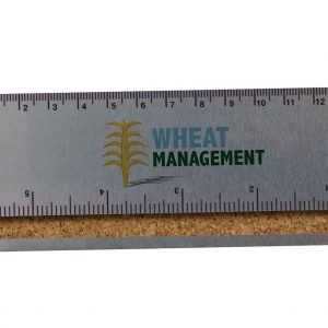 "6"" Aluminum Ruler w/ Cork Back CK-RL-6 Cork Products"