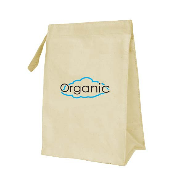 Earth Friendly Lunch Bags